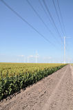 Power lines and wind turbines. In a field of sorghum.  Taken in South Texas Royalty Free Stock Image
