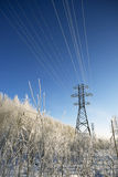 Power lines in winter. Royalty Free Stock Photos