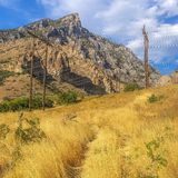 Power lines on yellow grass overlooking mountain stock images