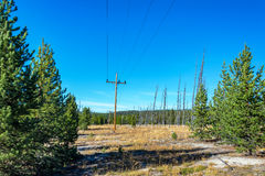 Power Lines in Yellowstone National Park Royalty Free Stock Image