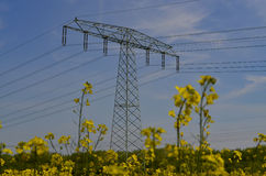 Power mast in filed Stock Photo