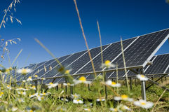 Power plant. Some solar panel in a grass Royalty Free Stock Photos