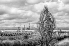 Power plant and tree stock image