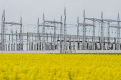 Power plant in yellow field Stock Image