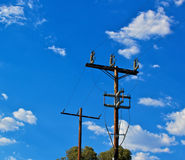 Power Pole Stock Images