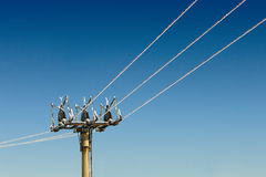 Power pole Royalty Free Stock Image