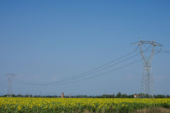 Power pole. High voltage line in sunflower field, Tuscany Stock Photo