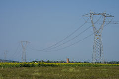 Power pole. High voltage line in sunflower field, Tuscany Royalty Free Stock Photos