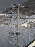 Power pole and homes (Japan) Royalty Free Stock Images