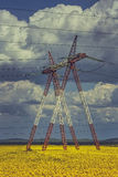 Power pole in rapeseed field Royalty Free Stock Image