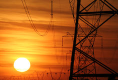 Power poles 080 Stock Photos