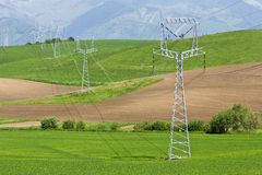 Power poles. A lot of power poles in country Stock Images