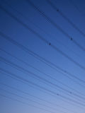 Power poles at dusk. On a clear summer evening royalty free stock photography