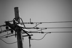 Power poles and power lines in black and white. Space for copy royalty free stock image