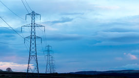 Power Poles. Row during blue hour stock photography