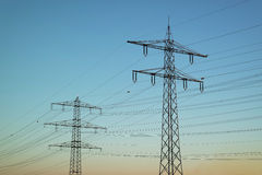 Power poles at sunset Stock Images