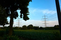 Power poles in a sunset royalty free stock photo