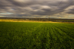 Power pylons in a field Stock Images