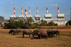 The power station in Thailand. Royalty Free Stock Image