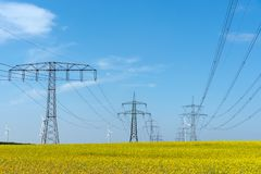 Power supply lines in a field of flowering oilseed. Seen in rural Germany royalty free stock photography