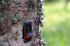 Power switch installed on birch tree. Concept of conservation, green business and alternative energy. Green background royalty free stock images