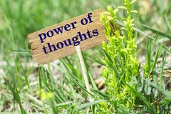 Power of thoughts wooden sign. Power of thoughts on wooden sign in garden with flower Royalty Free Stock Photography