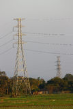 Power Transmission Line with Yellow sky Royalty Free Stock Image
