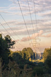 Power transmission tower on background greenery on a summer evening Stock Photo