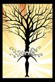 Power Tree. Abstract - person gets strength by connecting to nature Royalty Free Stock Image
