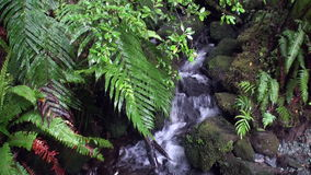 Power water of mountain river and rocky in New Zealand. stock video footage