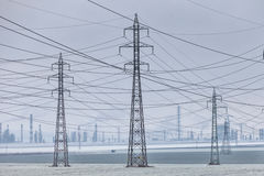 Power Wires By the Palnt Stock Photography