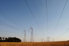 Powercables. Powerlines running through a national park Stock Photography