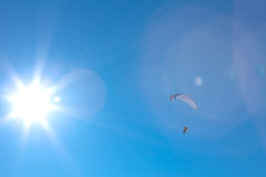 Powered paragliding with the sun Stock Photos