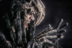 Powerful. Ancient shaman warrior. Ethnic costume. Paganism, ritual Stock Photography