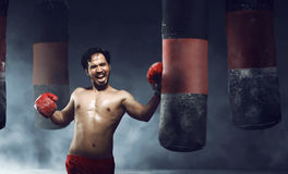 Powerful asian male boxer doing exercise Royalty Free Stock Images