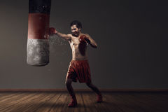 Powerful asian male boxing exercising with punching bag Royalty Free Stock Photography