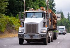 Powerful big rig semi truck transporting logs in front of trucks. A large classic powerful big rig semi truck carries thick logs on a special trailer to stock photos