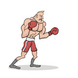 Powerful boxer Stock Photography