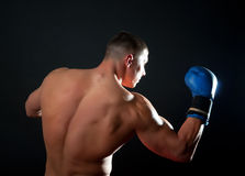 Powerful boxer during traning Royalty Free Stock Image