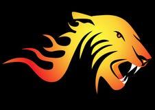 Powerful burning tiger Stock Photos