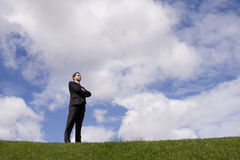 Powerful businessman Royalty Free Stock Images
