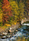 Powerful forest brook with rocky shore. Powerful mountain brook with rocky shore among colorful foliage. lovely autumnal nature background Stock Photos