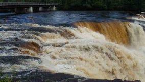The powerful kakabeka waterfalls in north ontario stock video