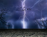 Powerful lightnings in dark stormy sky, flock of flying ravens, stock images