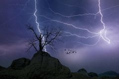 Powerful lightnings in dark stormy sky, weather forecast concept stock photos