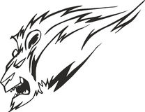 Powerful lion head Stock Image