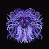 Powerful lion with a lush mane. With a variety of patterns Stock Photography