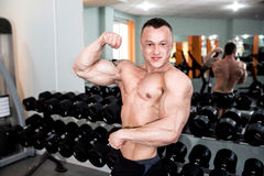 Powerful man trains in the gym Royalty Free Stock Image