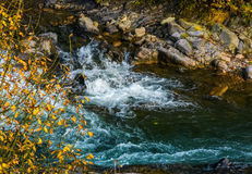 Powerful mountain brook with rocky shore. Lovely autumnal nature background Stock Photos