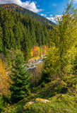 Powerful mountain brook with rocky shore in valley. Lovely autumnal nature background Royalty Free Stock Photography